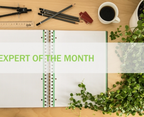 january expert of the month